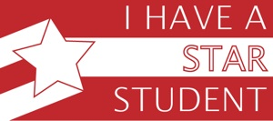 "4"" x 9"" Bumper Sticker"